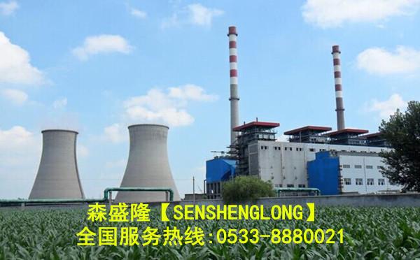 阻垢分散剂在电厂循环水系统应用概述